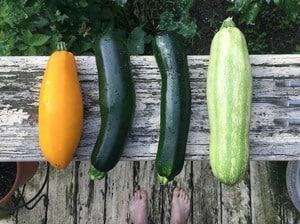 keto-zucchini-recipes