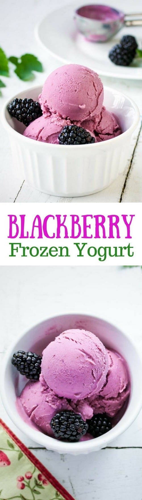 Mediterranean Blackberry Frozen Yogurt
